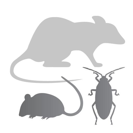 Pests/Vermin